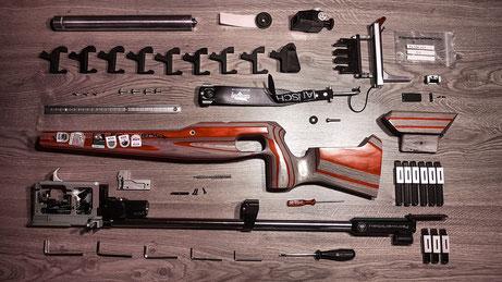 Sommerbiathlon Gewehr Luftgewehr Feinwerkbau P75
