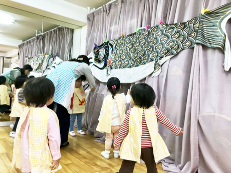 幼児教室のフィオーレコース(2歳児)の生徒が、大きなこいのぼりに興味を持って楽しんでさわったり見たりしています。