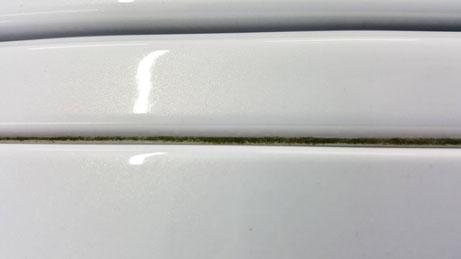 RX‐8のルーフモールの苔