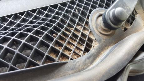 C63AMG カウルトップの汚れ