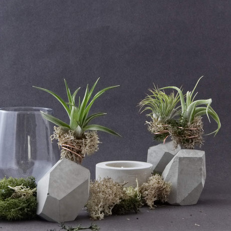 Versatile concrete home decor accents by PASINGA design