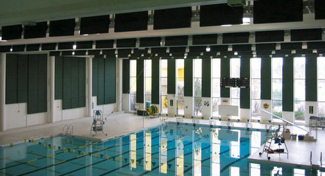 Swimming Pool With Acoustical Treatment on Ceiling and Walls