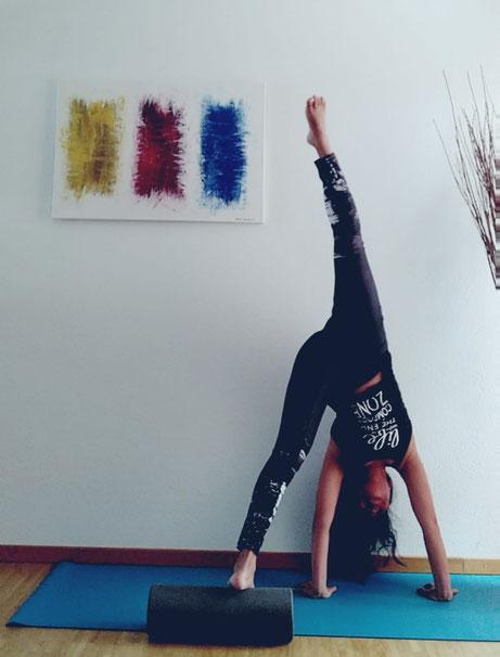 Meditation und Power Yoga. Tigress Yoga, die Symbiose von Power Vinyasa Yoga &  Kung Fu. Ideal für sportliche Anfänger. Yoga Ausbildungen & Weiterbildungen für Yogalehrer, Physiotherapeuten & Sportprofis. In Zürich Oerlikon.