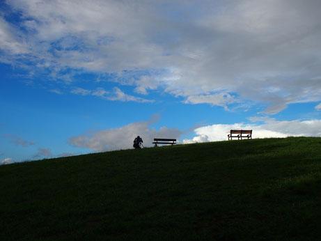 9月17日(2014) 曼珠沙華(マンジュシャゲ)の咲く道:調布市野草園