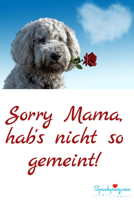 Muttertag Verzeihung Zitat