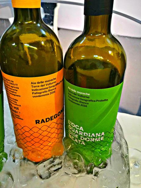 Pallagrello Etesiaca itinerari di vino blog