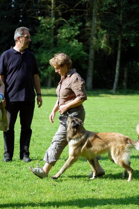 Sabine zeigt hier mit Leni eine schöne Fußarbeit. Der Hund geht aufmerksam, freudig und auf die Hundeführerin fixiert