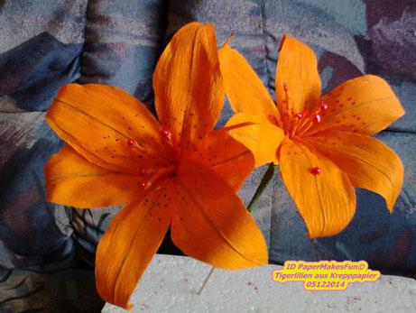 tiger lilies - Tigerlilien