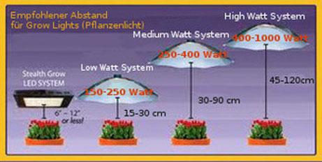 Grow Lamp Abstand, Hanf Licht  Abstand zu den Hanfpflanzen beim Indoor Grow
