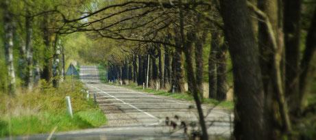 Typische Landstraßen