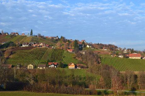Schilcherweinberge in St. Stefan ob Stainz