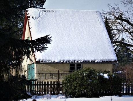 Marderspuren auf dem Dach Foto: Dr. Hans-Heinrich Krüger