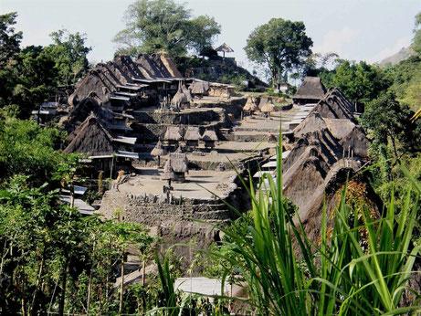 Traditionele dorpje Bena op de voet van de Inerie vulkaan op Flores in Indonesie