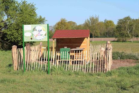 Ein kleiner Holzunterstand, eingezäunt von dünnen Holzlatten, unter dem ein Bienenvolk steht. Im Vordergrund befindet sich eine Infotafel.