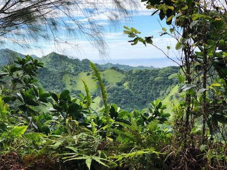 Hiking Raemaru Rarotonga, Raemaru views