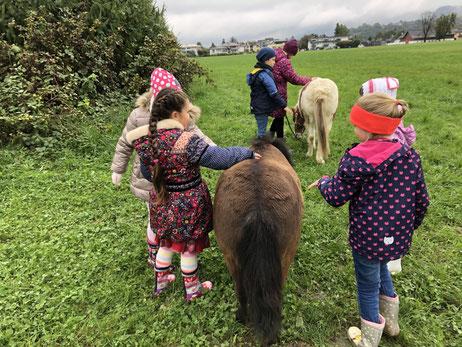 Kindergeburtstag am Bauernhof