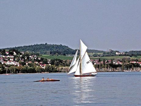 Wasser See Bad Schussenried