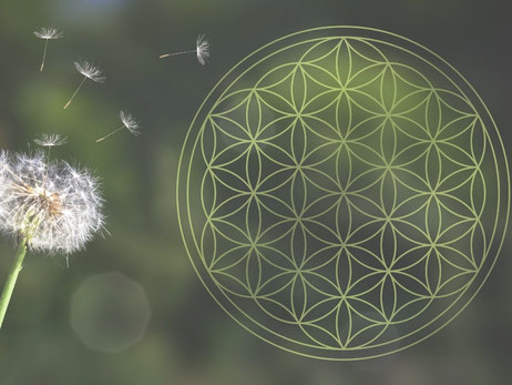 reequilibrage des chakras grace a la vibration des pierres de soin et des sons des bols tibetains