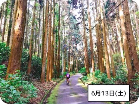レンタサイクル 淡路島 ロードバイク