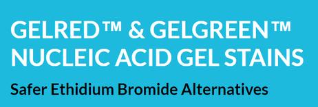 GelRed, Gel Red from Biotium and GeneON
