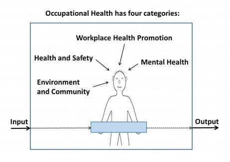 Occupational Health Model - www.learn-study-work.org