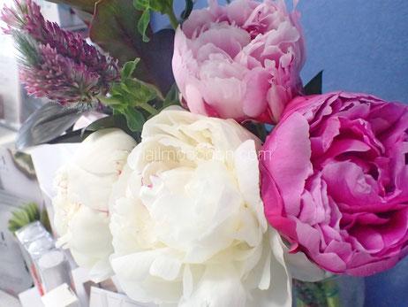 今のサロンのお花は芍薬が飾ってあります