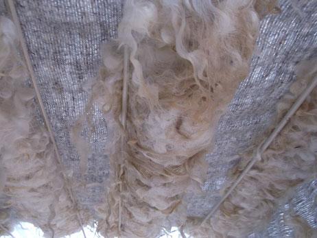 handgewebtes Zottengewebe nach der Vorwäsche