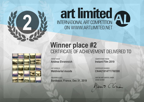2nd Place Instant Film Competion Artlimited