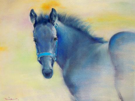 パステル画教室 馬 馬絵画 パステル画 肖像画