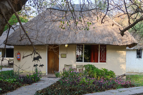 Island Safari Lodge in Maun