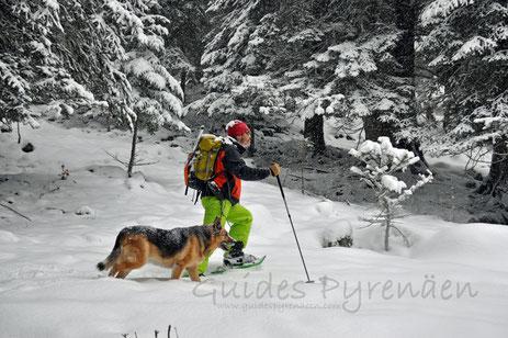 Raquetas de nieve Vall d'Aran, excursiones con raquetas valle de aran, rutas raquetas vall d aran , raquetas de nieve vielha, rutas con raquetas de nieve en baqueira, mejores rutas con raquetas de nieve, rutas raquetas de nieve cataluña, rutas raquetas de