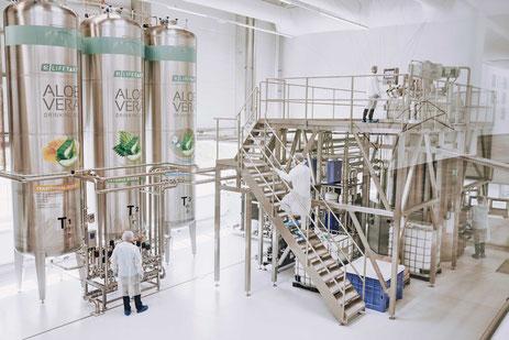 Nouvelle usine aloe vera en Allemagne, aux normes pharmaceutiques