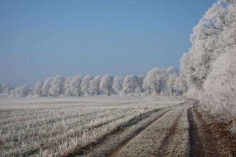 Winter im Herzogtum Lauenburg