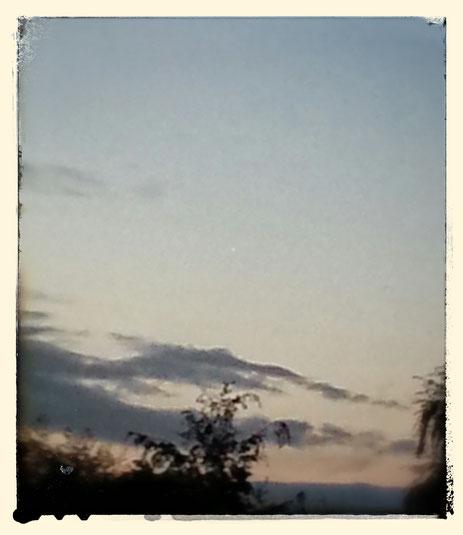 Stern am Morgen