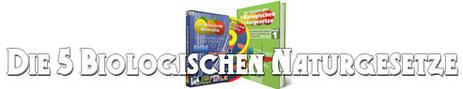Buch+DVD = 6,50,- €uro Ersparnis;)