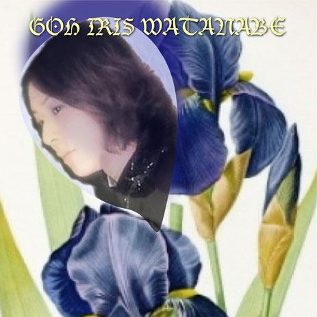GOH IRIS WATANABE
