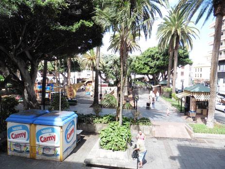 Blick auf das Treiben auf dem Plaza del Charco in Puerto de la Cruz.