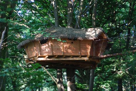 Cabane perchée à 8 m, accessible par un escalier en colimaçon puis par une passerelle de 15 m de long, sécurisée par des filets.