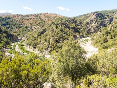 Blick auf den Riu Calaresu