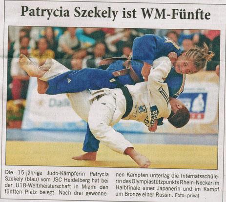 Veröffentlicht am 23.09.2013 in der Rhein-Neckar-Zeitung