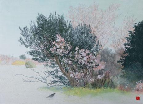 吉澤光子 P8号 『春めく』