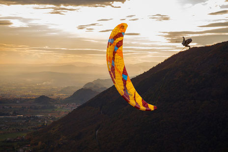 Volie de parapente Icaro Xenus freestyle