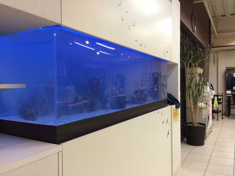 水換え不要の海水魚水槽 大阪府羽曳野市美容室様
