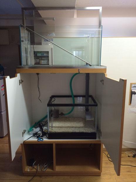 水換え不要の海水魚水槽 オーバーフロータイプ 京都のクリニック様