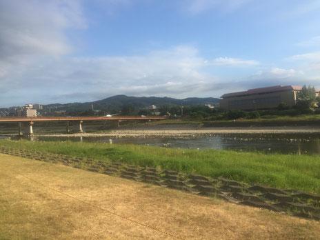 宝塚の河川敷