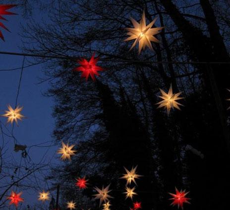 Herrenhuter Sterne, auch bei uns in Güster findet man welche!