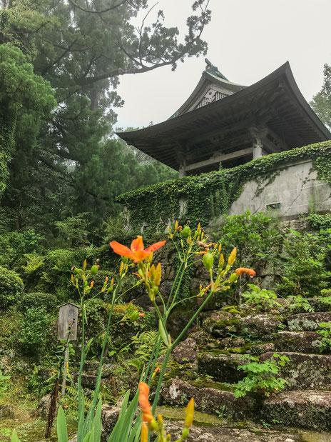 熊野妙法山阿彌陀寺の盛夏