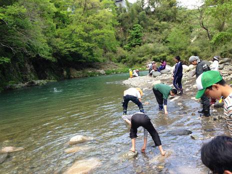 散策チームは吉田川へ。大人も子どもも水切りに夢中です。