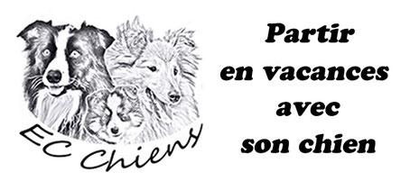 ec-chiens education canine vous detail tout ce qu'il faut savoir pour partir en vacances avec son chien, pour passer des vacances avec son chien et savoir préparer la valise de son chien