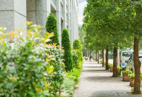 不動産の現況調査:中心街の歩道のイメージ